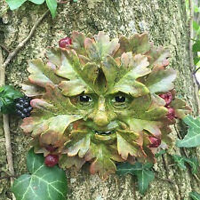 Hawthorn Green Man Garden Ornament Wall Plaque Face Berries Leaf Tree NEW 09012