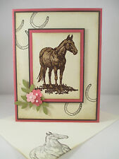 "Stampin Up ""Horse Frontier"" Handmade Any Occasion Card"