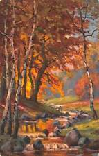 Autumn Nature Small Creek, Willy's Signed