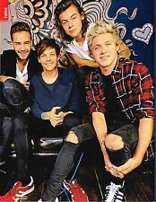 ONE DIRECTION - 1D - LIAM PAYNE - LOUIS TOMLINSON - HARRY STYLES & NIALL HORAN