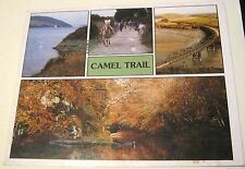England Camel Trail Bodmin Cornwall Quill Cards - posted 1995