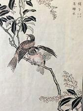 Kono Naotoyo Bairei estampe japonaise oiseau fleur maître Kacho-e XIXème Japon