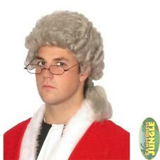OLD ENGLAND GREY BARRISTER JUDGE COURT LAW WIG - mens fancy dress accessory