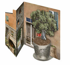 3D Italian olive grove & courtyard greeting card celebrate birthday anniversary