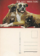 1980's BOXER DOGS - WE ALL MISS YOU UNUSED COLOUR POSTCARD