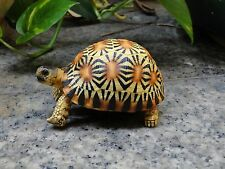 Life Size Baby Radiated Tortoise Turtle Replica Model Figurine high yellow 9cm