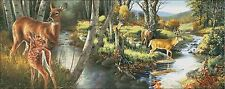 Needlework Crafts Full Embroidery DIY Counted Cross Stitch Kits Birch Creek Deer