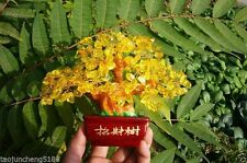 298g Lucky tree!!! Natural pretty citrine yellow crystal gem tree