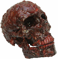 HALLOWEEN  BLOOD SCAB RESIN SKULL CEMETARY  HAUNTED HOUSE  PROP DECORATION