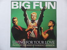 "MAXI 12"" BIG FUN Living for your love JIVE T 200"