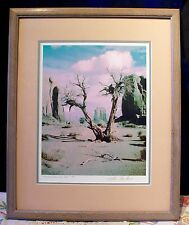 Framed Original Print Of STORM IN MONUMENT VALLEY #8 BY Lou DeSerio 1993