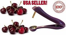 USA Seller Cherry Pitter Olive Stoner Corer Hand Held Seed Remover Cherries Tool