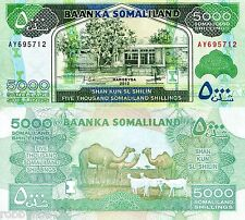 SOMALILAND 5000 Shillings Banknote World Money Currency Africa Note 2012 Bill
