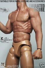 ZC TOYS 1/6 Scale 12Inch Male Muscular Figure Body With Seamless Arms 3.0