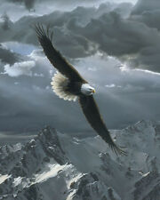 Sacred Heights (detail) by Daniel Smith Art Print - Eagle Wildlife Poster 16x20