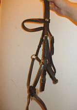 barnsby grackle bridle