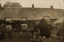 Long Compton photo. House Garden, Dogs & Conifer by Lewis Stowe, Long Compton.