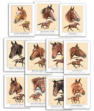 TRIPLE CROWN WINNERS horse racing art ACEO SET of 12 cards Thoroughbred Portrait