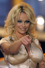 Pamela Anderson 700 Pictures Collection Vol 2 DVD (Photo/Images Disc)