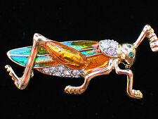 GREEN GOLD CLEAR INSECT BUG MANTIS GRASSHOPPER CRICKET PIN BROOCH JEWELRY 2.50""