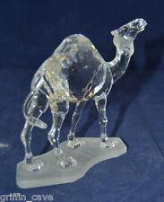 Superb  SWAROVSKI Crystal Camel With Original Box