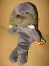 """Retired TY Beanie Baby JOLLY the Walrus w/ tag 1996 not so jolly babies 6 3/4"""""""