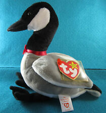 Ty Beanie Babies Loosy March 29, 1998 MWMT in a Bag