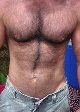 Shirtless Male Hairy Chest Abs Masculine Dude Torso Close Up Shot PHOTO 4X6 N501