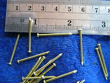 25 Solid brass 16 gauge escutcheon pin rivet steampunk sca 1/16 x 1