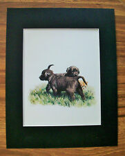 Print Black Lab Dog Tara Moore 3s Crowd Pups Orange Cat KItty Bookplate 1982 Mat