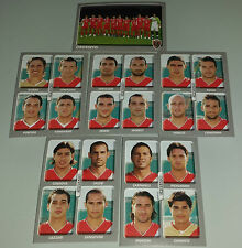 FIGURINE CALCIATORI PANINI 2008-09 SQUADRA GROSSETO CALCIO FOOTBALL ALBUM