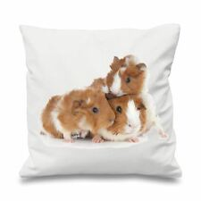 """Guinea Pig Family 18"""" x 18"""" Filled Sofa Throw Cushion - Pet Pigs Gift Present"""