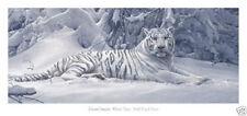 White Tiger Daniel Smith Snow Wildlife Art Print Poster 30x14