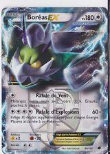 Boréas EX-N&B:Glaciation Plasma-98/116-Carte Pokemon Neuve Française