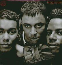 """IMAGINATION"""" THE FASCINATION + BONUS MIX """" LP SIGILLATO ITALY"""