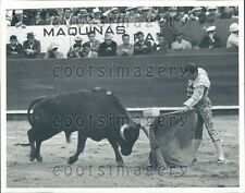 Matador With Cape in Bullfight Press Photo