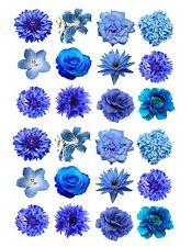 24 glaçages pour gâteau de givrage fée décorations comestibles mixte fleurs bleues ND1