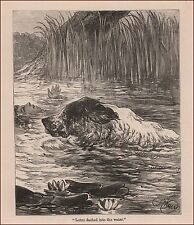 Newfoundland Dog Saves Girl by H. Weir, antique engraving, print, matted, 1895