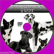 DOG GROOMING VIDEO DVD GUIDE A STEP BY STEP CLEANING BATHING DRYING CARE  NEW