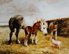 Horse, colts and a pig vintage art by Fanny Moody