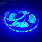 16.4FT 5M/roll Blue SMD 3528 300 LED Flexible Strip waterproof IP65 Lights