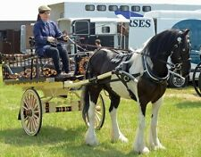 show winning cart plans with cd with 350 photos gypsy cart caravan romany wagon