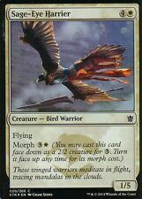 Sage-Eye Harrier foil | nm/m | Khan of tarkir | Magic mtg