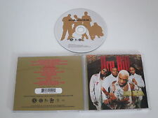 DRU HILL/ENTER THE DRU(ISLAND 524 542-2) CD ALBUM