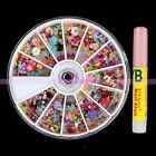 Chic Mixed Colors Flower Bow Butterfly Glitter Nail Art Decor Tool + 2g Glue Set