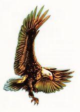 Temporary Tattoo, Einmal Tattoo  Bullseye BTS-06, wunderschöner Weißkopfadler