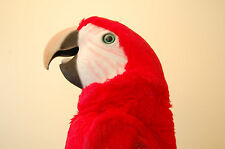 AXTELL MACAW PARROT PUPPET Life size