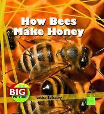 The Big P