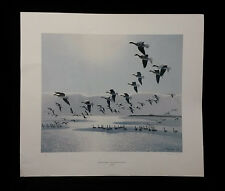 Greylags Came Out Over The Dunes For a Drink by P Scott-Ltd Edt.Signed-PRINT