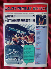 Wolves 1 Nottingham Forest 0 - 1980 League Cup final - souvenir print